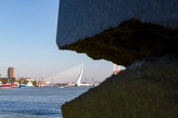 Zicht op de Maas in Rotterdam van
