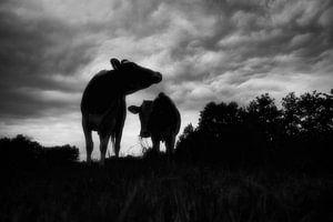 compositie met koeien van jan van de ven