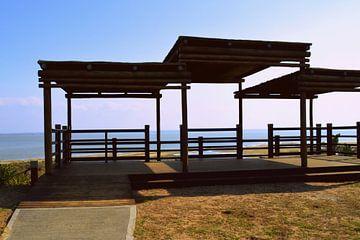 Viewpoint bij St. Lucia Lake in iSimangaliso, St. Lucia, Zuid Afrika van Vera Boels