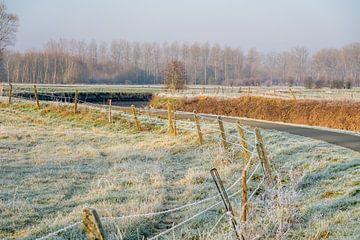 Een ijzige zonnige morgen aan de Dender van Marcel Derweduwen
