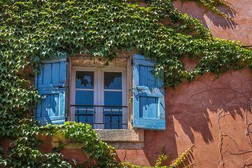 Wein umranktes Fenster in der Provence von Christian Müringer
