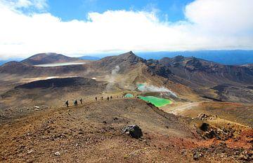 Smaragdseen, Tongariro-Nationalpark Neuseeland von GoWildGoNaturepictures