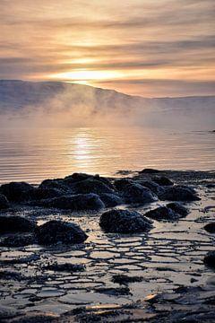 Een koude wintermorgen van Elisa in Iceland