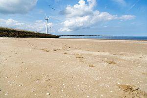 Het strand op een mooie, zomerse dag