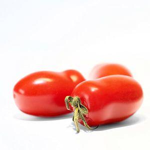 reife Roma-Tomaten von Heiko Kueverling