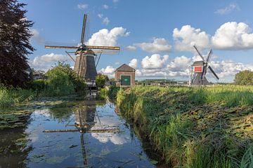 Hollands zomerlandschap met twee molens