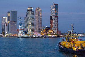 Kop van Zuid, Rotterdam van Anne Reitsma
