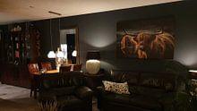 Klantfoto: Schotse Hooglander bij avondlicht. Gouden uur. van Henk Van Nunen, op canvas