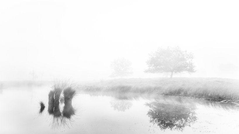 Mistige weerspiegelingen. #2 van Lex Schulte