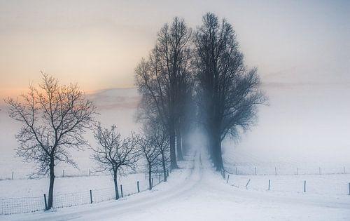 De weg naar.... von Ingeborg Ruyken