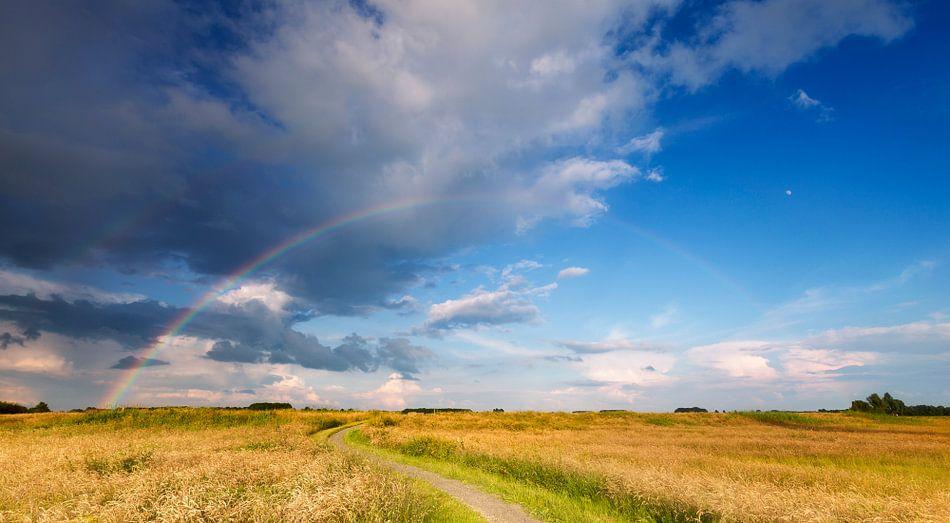 Mijn pad naar de regenboog