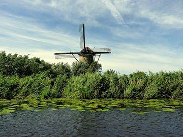 Typisch Nederlands von Piet van Winkel