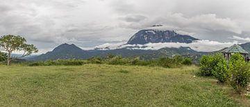 Berg Kinabalu von didier de borle