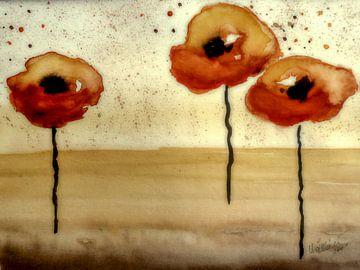 Woestijn papavers van Christine Nöhmeier