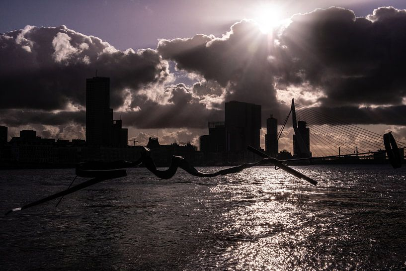 Rotterdam Erasmusbrug . van Brian Morgan