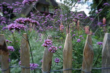 Schmetterling blüht durch das Tor von Tom Poppelaars