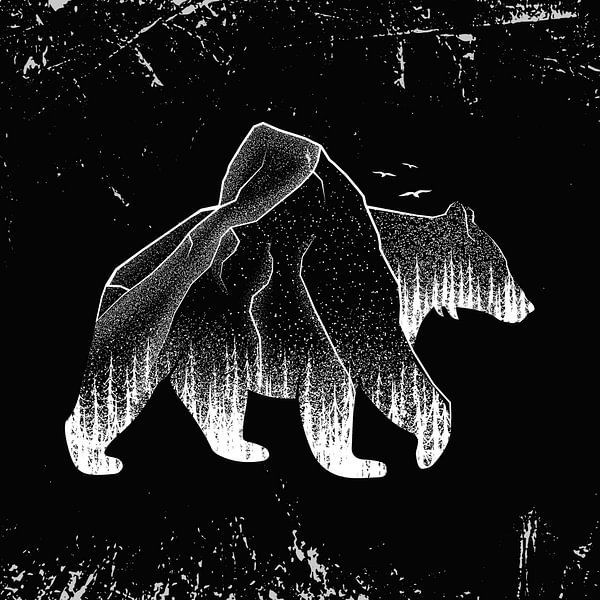 Bär Braunbär Grizzlybär Wald van Felix Brönnimann
