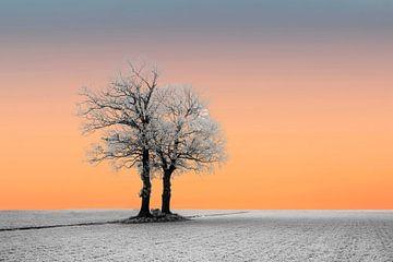 Sonnenaufgang in einer Winterlandschaft von Gert Hilbink