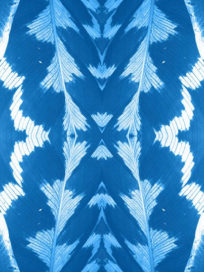 Bladnerf in blauw