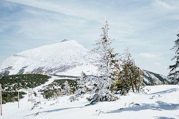 Sniezka Berg van Patrycja Polechonska