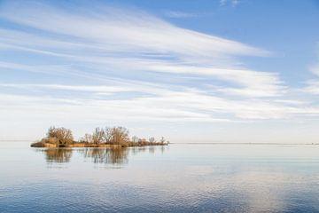 Een eenzaam eiland  van Omri Raviv