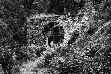De oude kasteelpoort 3 van Jörg Hausmann