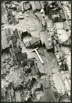 Potsfordia pretiosa shale (Lower Cambrian) near Charny, Quebec, Franco Rasetti van De Canon