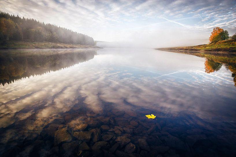 Gelbes Blatt auf dem Wasser von Oliver Henze