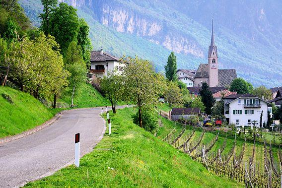 Mountain Village Pinzon
