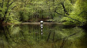 Kunst en natuur Sonsbeek van Jan  Sterken