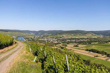 Boerenweg door de wijngaarden met Moezellandschap op de achtergrond van Reiner Conrad