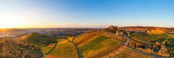 Luchtfoto wijngaarden en grafkapel in Stuttgart van Werner Dieterich
