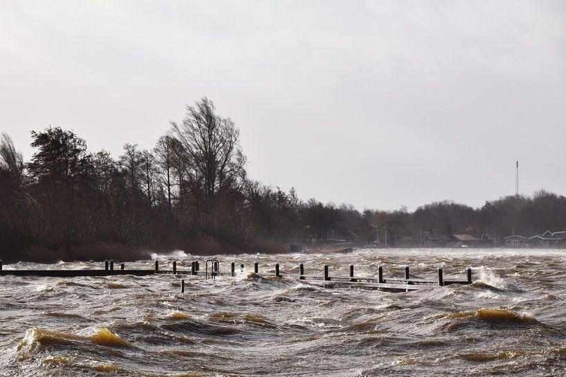 Storm zorgt voor hoge golven op de Reeuwijkse Plassen, Reeuwijk / Bodegraven van Robin Verhoef
