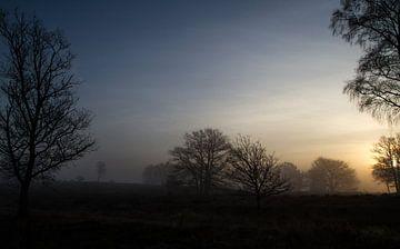 Kleuren in de mist von Patrick Ruitenbeek