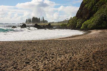 Tropical Hamoa Beach von Louise Poortvliet