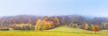 Landschap in herfstmist van Tobias Luxberg