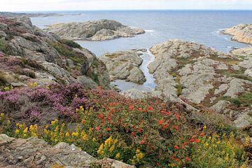 Atemberaubende Westküste Schwedens von Naomi Kroon