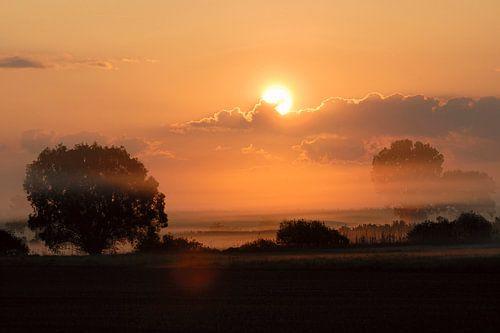 Sunrise above wet meadows, sun shining through the morning mist van wunderbare Erde