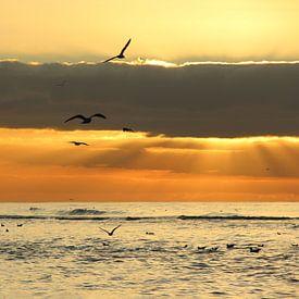 Katwijk aan Zee serie - Winterse zonsondergang aan zee van Wilma Overwijn
