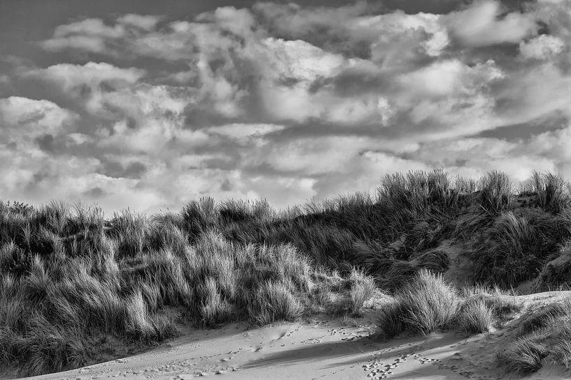 Duinlandschap in zwartwit van Ilya Korzelius