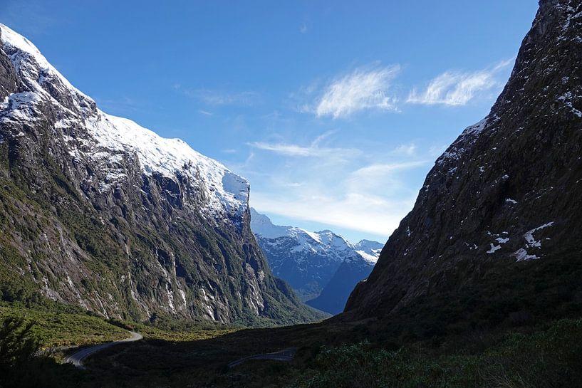Cleddau Valley op weg naar Milford Sound in Nieuw Zeeland van Aagje de Jong