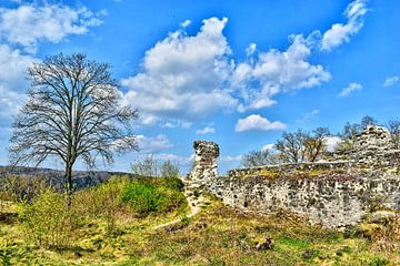 Ruïne van kasteel Kallmünz van Roith Fotografie
