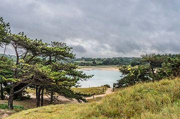 La lagune de L'Islet bij Sables d'Or les Pins. sur Don Fonzarelli