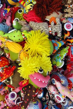 Kleurrijke Knuffels von R. de Jong