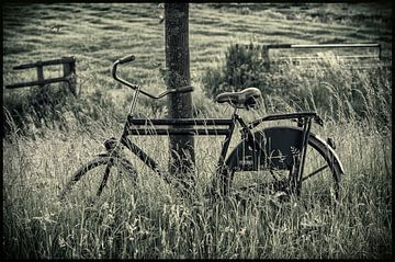 Fahrrad auf dem Bauernhof von Jackie van der Meulen