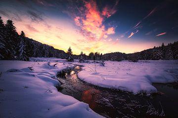 de kleuren van de winter van Konstantinos Lagos