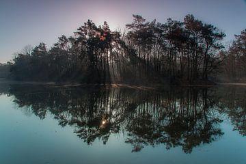 Spiegel van de natuur von Sebastiaan van Baar