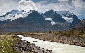 Bergpanorama, Jasper National Park, Rocky Mountains, Alberta, Canada van Alexander Ludwig