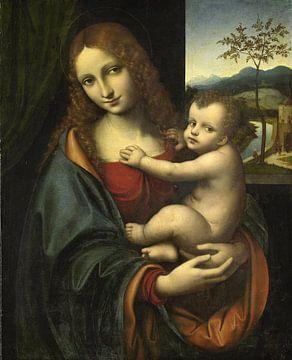Maria mit dem Kinde, Giampetrino(zugeschrieben)
