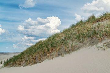 Dünenlandschaft bei Hoek van Holland von Ilya Korzelius